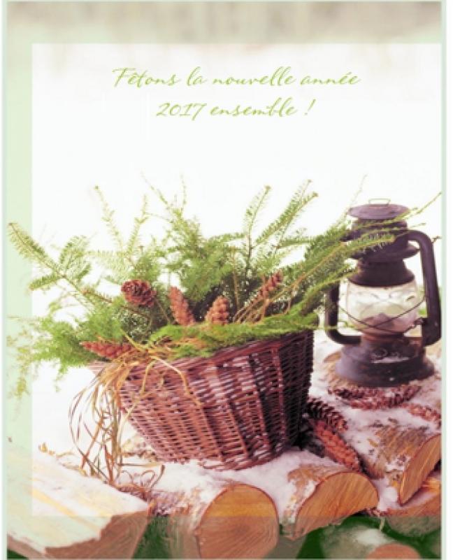 Affiche - Invitation au brunch du Nouvel An à Prince Albert