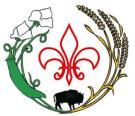 Logo - Centre francophone BDS Inc.